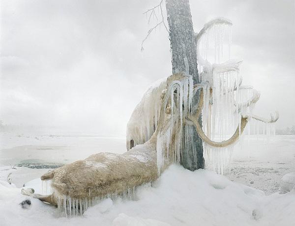 """""""Untitled #159, 2010 (frozen)"""" by artist Simen Johan. Photo Courtesy of: Simen Johan."""