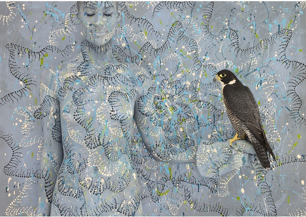 """Peregrine Falcon with Spotted Sun"" for the ""Birds of Prey"" collection by Emma Hack. Photo Credit: Emma Hack."
